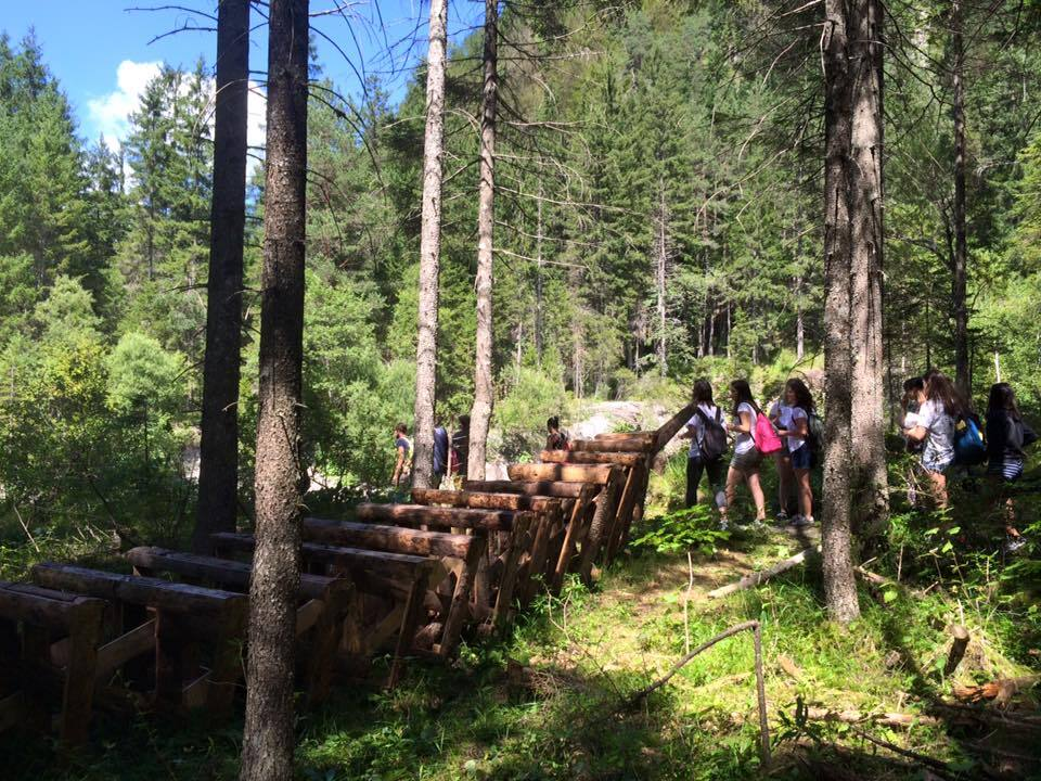Altrememorie / Il Parco dell'arte in Val Saisera
